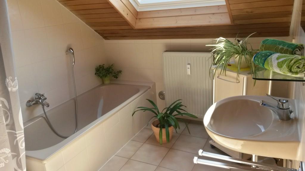 Badezimmer, WC, Flur | Ferienwohnung Fehrenbach Neuenstein (Hohenlohe)